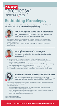 A Guide to the Pathophysiology of Narcolepsy
