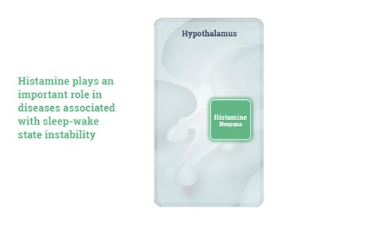 Histamine Video Thumb